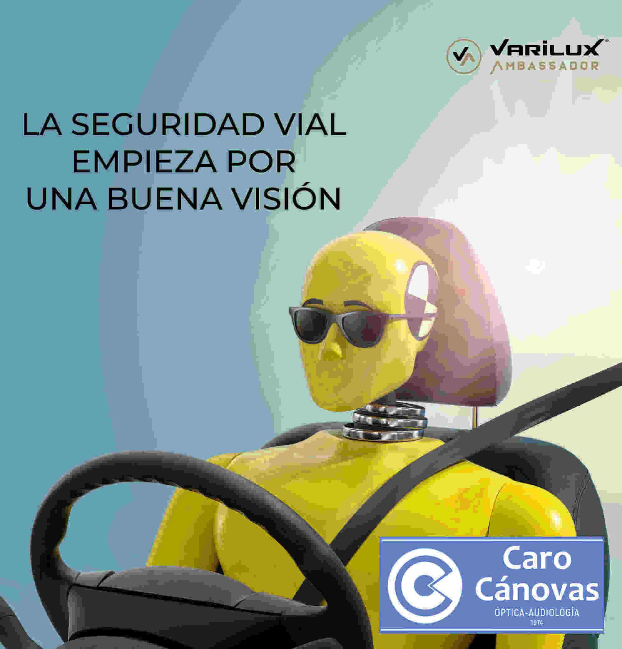 seguridad vial visión